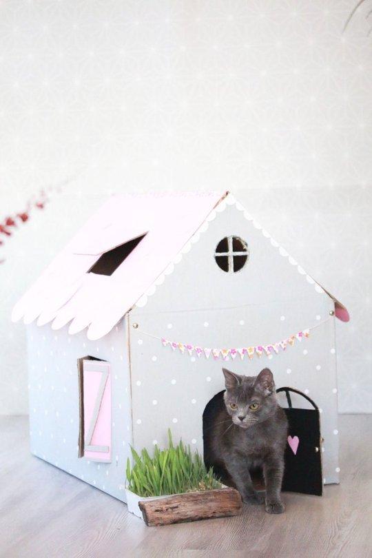 χάρτινο σπίτι για την γάτα σας