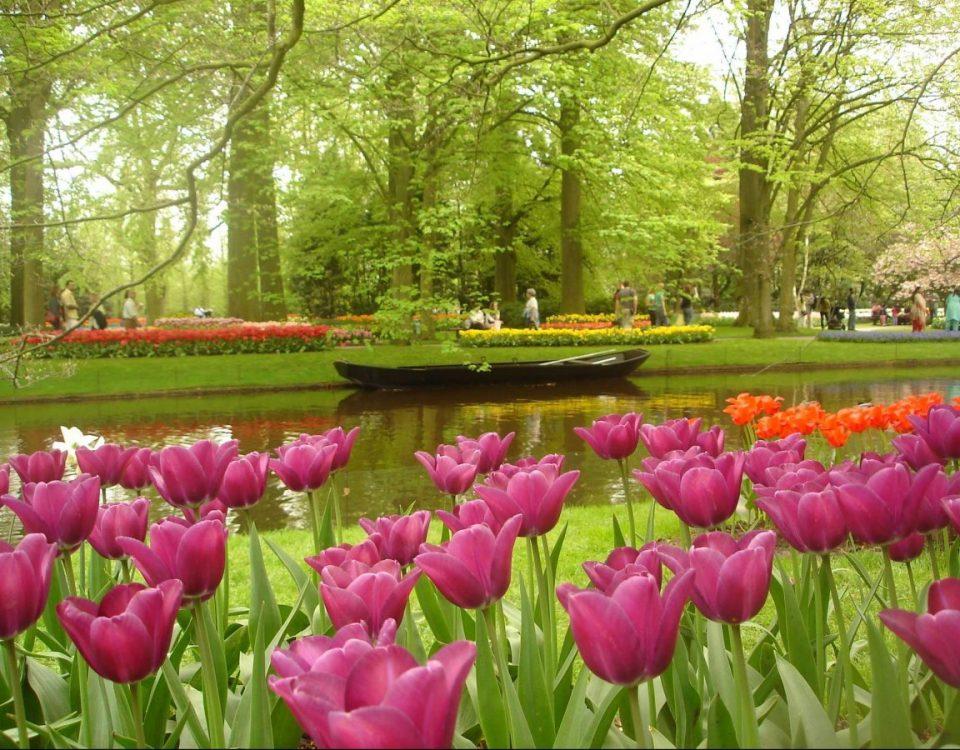 spring-destinations